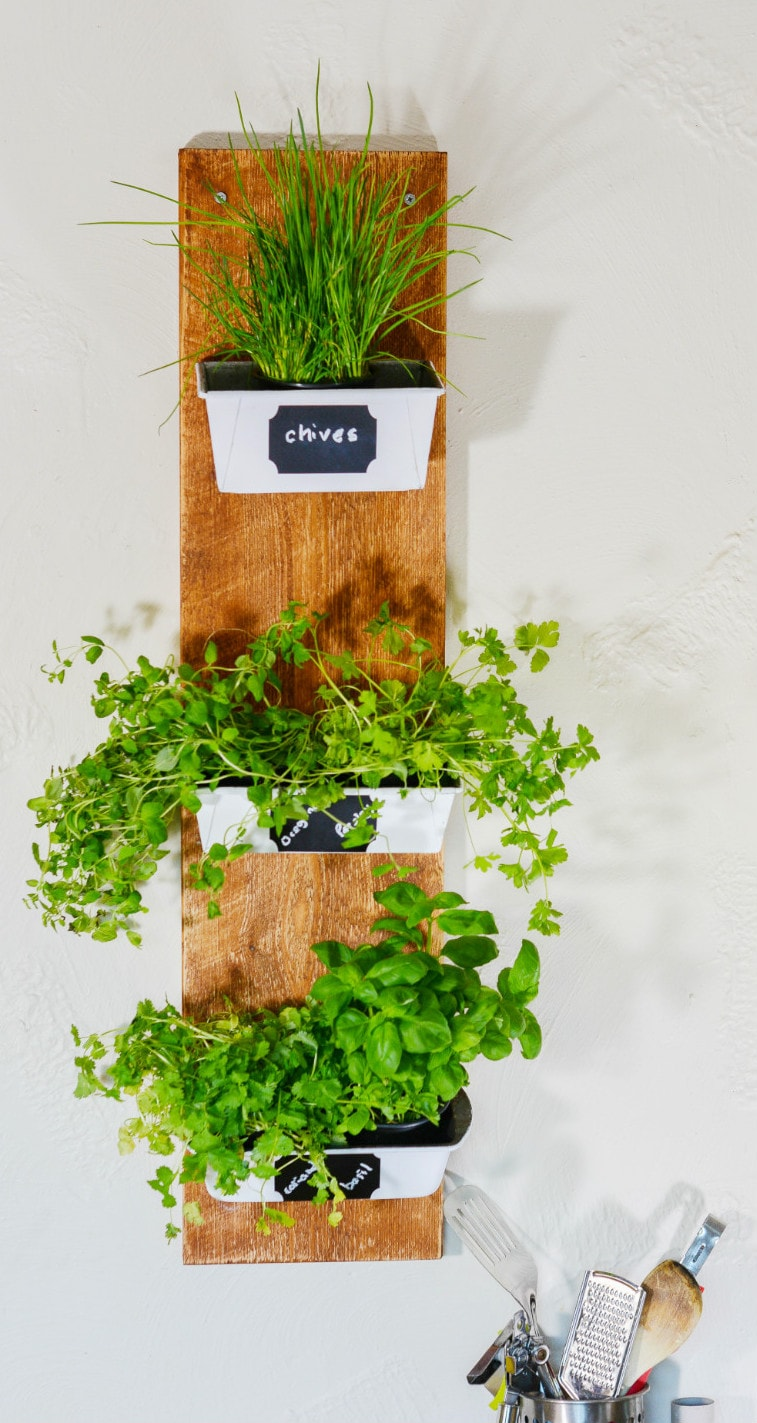 DIY recycled planter - don't throw rusty loaf tins away! 14