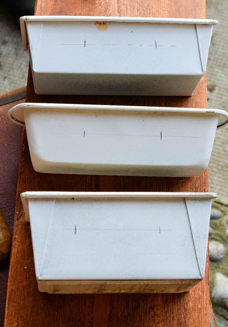 DIY recycled planter - don't throw rusty loaf tins away! 8