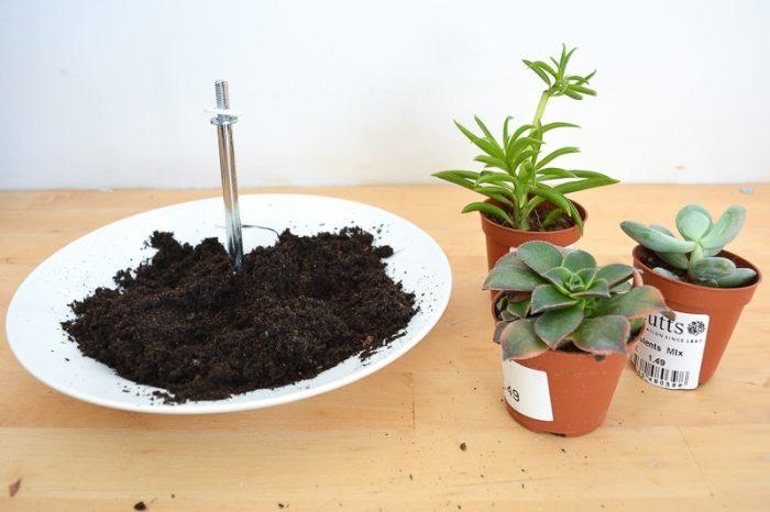 Succulent Planter DIY 14
