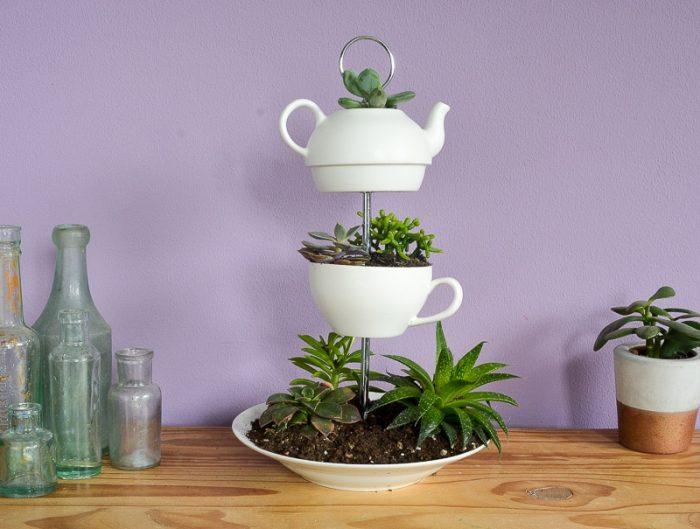 Succulent Planter DIY 2